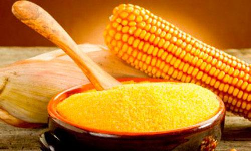 Кукуруза: золото инков